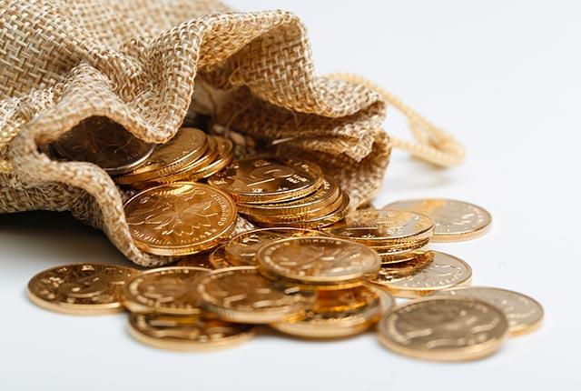 Vente aux enchères La Bigne 14260 - Pièces en or